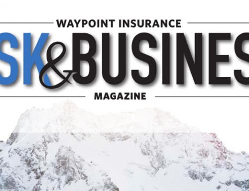 Winter 2018 Risk & Business Magazine